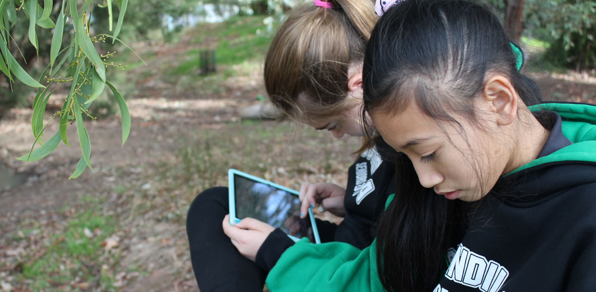 Students using iPads outside